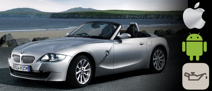 Reset BMW Z4 Oil Service Icon