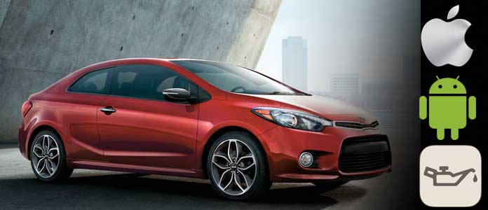Reset Kia Forte Engine Oil Light